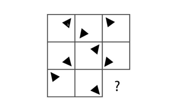 câu hỏi 5